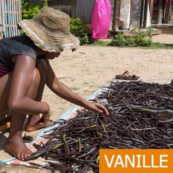 MTB Mada Vanille Bourbon