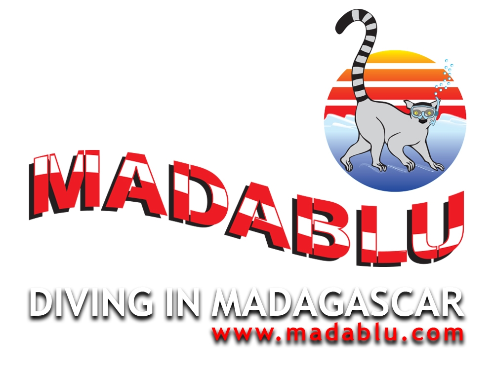Madablu diving in Madagascar