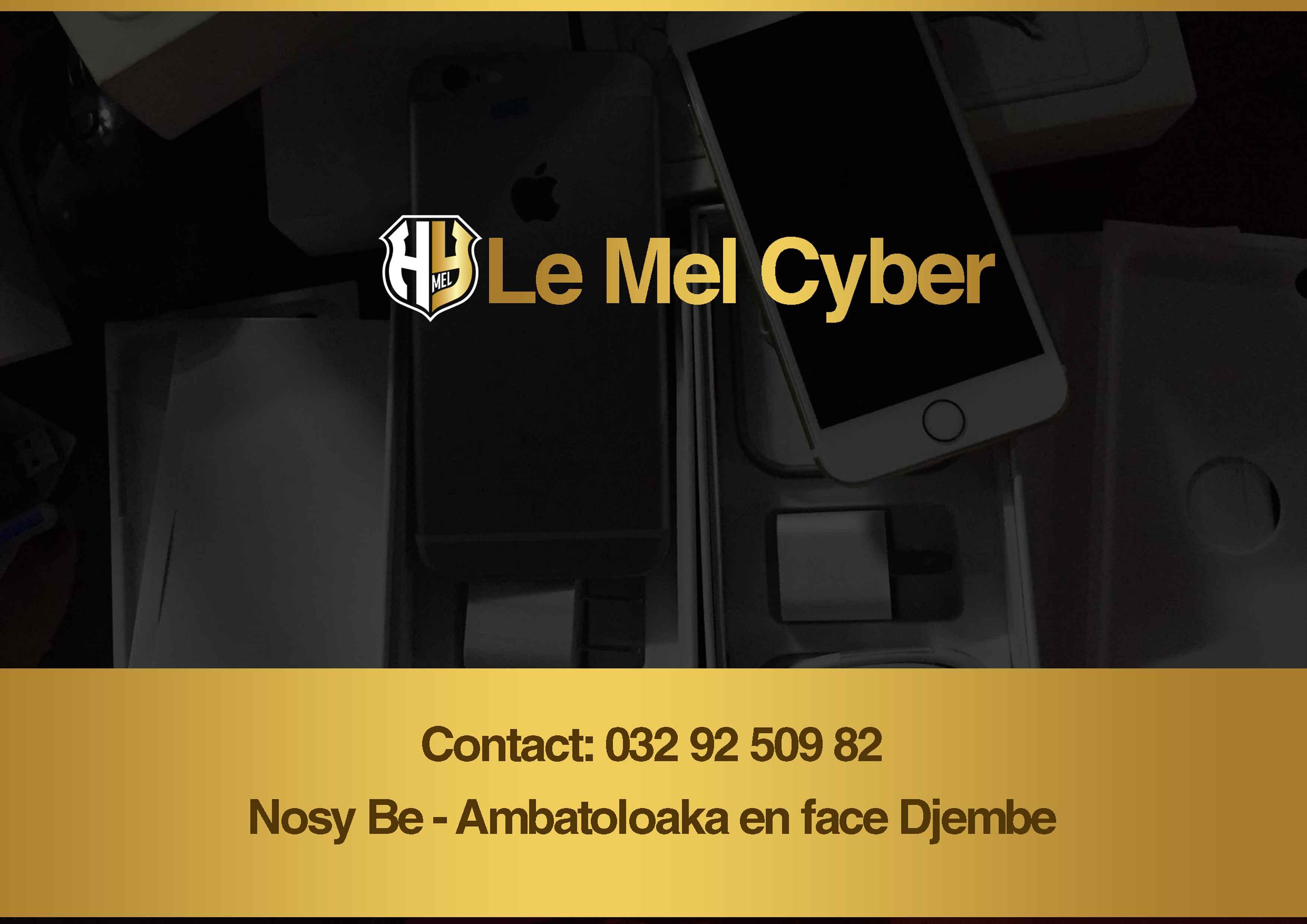 Le MEL Cyber